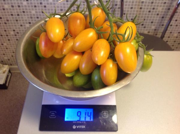 Весы с помидорами