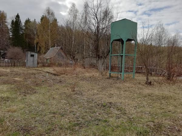 Вот так выглядит участок сейчас, хотим посадить газон