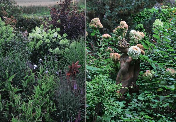 Метельчатой гортензии идут сады разных стилей