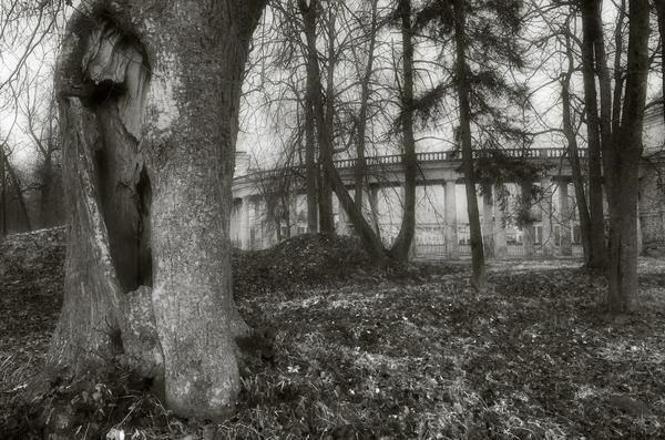 Колоннада и старый парк