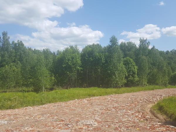 Вид на участок с дороги