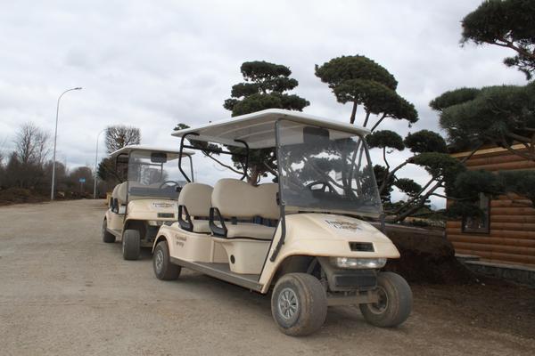 машинки для передвижения по садовому центру Империал Гарден