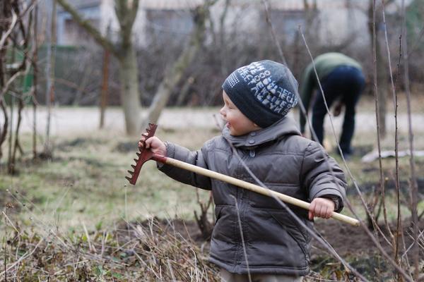 Работы в саду и огороде на первой неделе апреля