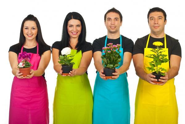 Финалисты конкурса домашних цветов