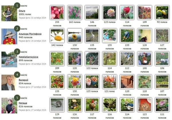 Победители первого этапа конкурса дачных фотографий