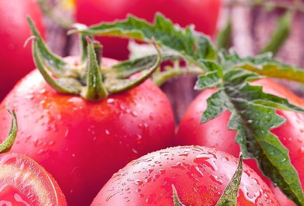 Конкурс 100 000 рублей за лучший помидор