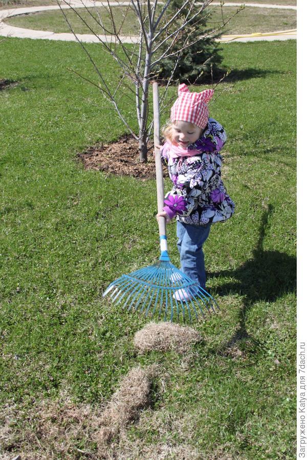 ребенок грабли газон