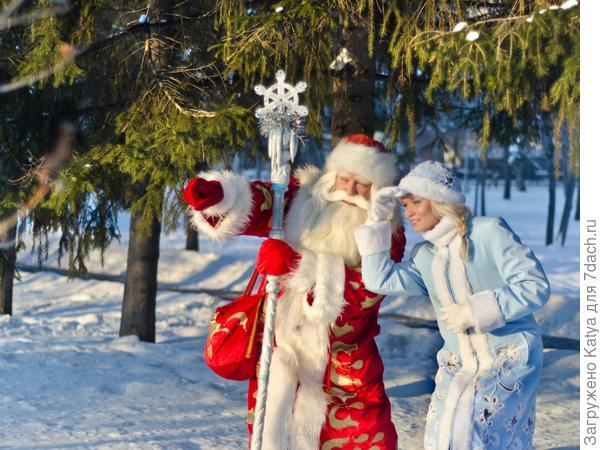 дед мороз, снегурочка, новый год