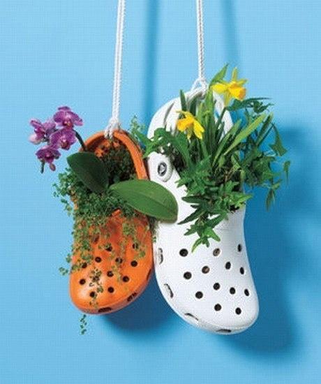 Цветы в тапочках
