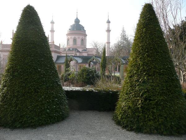 Туя складчатая, Шветцинген, Турецкий сад, Германия