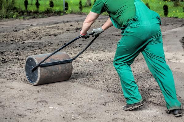 Выравнивание и утрамбовка земли под газон