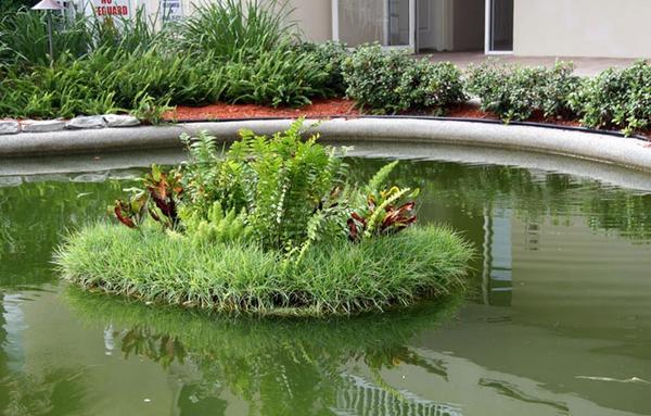 Плавающая клумба в пруду