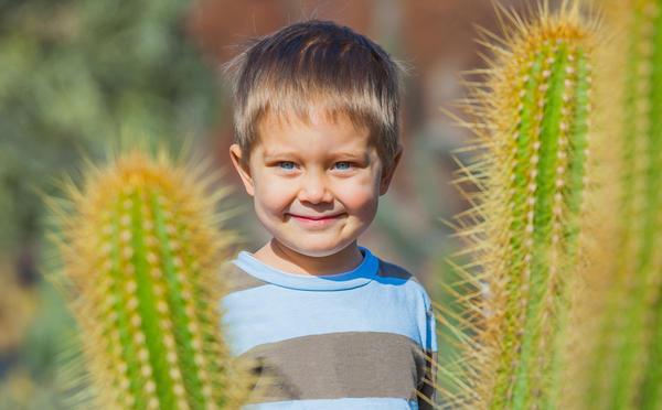 Опасные для детей растения
