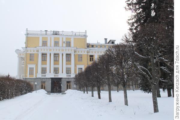 Шарообразная стрижка деревьев в Архангельском