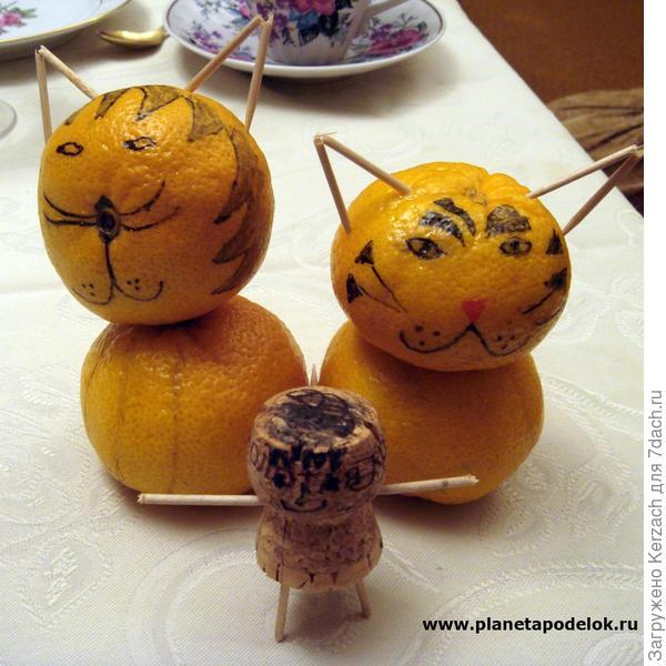 Котики-мандарины