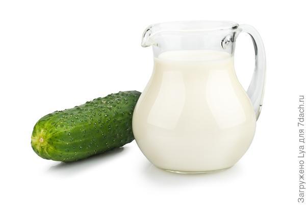 Огурцы и молоко