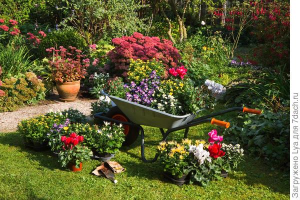 Не бойтесь искать нестандартные решения для цветников