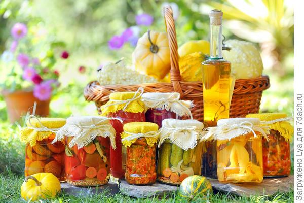 Август — время заготовки овощей на зиму