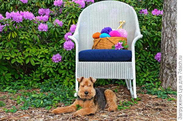 Удобное кресло в саду