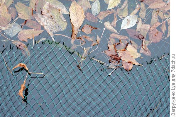 Поверхность дачного пруда удобно закрыть специальной сеткой
