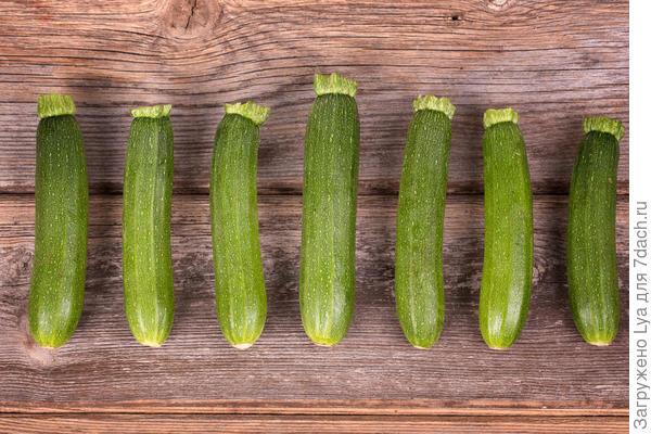 Снимать кабачки нужно, оставляя ножку длиной не менее 5-6 см