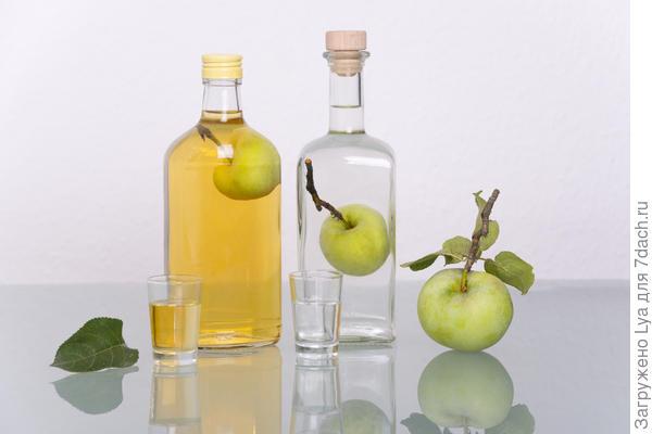 9456c2 Яблоки на зиму: 12 беспроигрышных способов заготовки