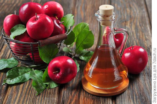 9620a9 Яблоки на зиму: 12 беспроигрышных способов заготовки