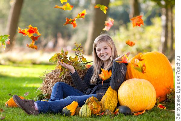 Вот и осень пришла…