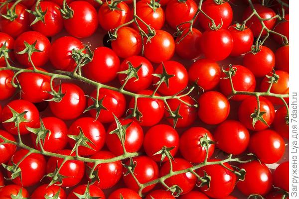 Томаты вишня красные