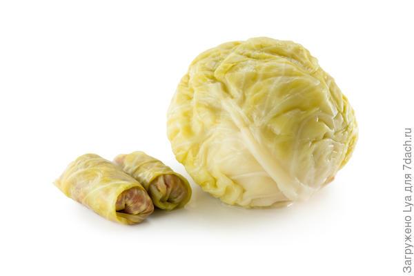 Рецепт засолки капусты от октябрины ганичкиной
