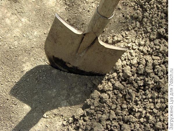 Откуда берется плотная почва?
