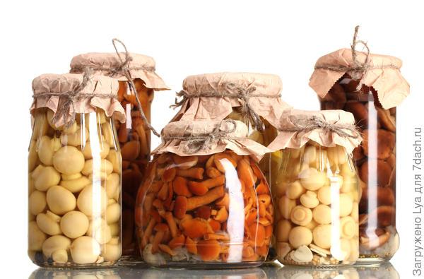 Хранение маринованных грибов