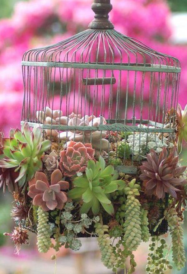 Клумба в птичьей клетке