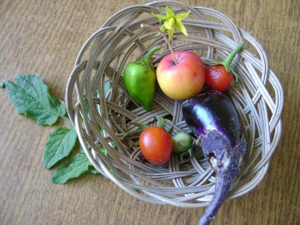 Набор мини-овощей)