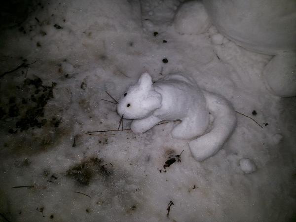 Снежная Няву
