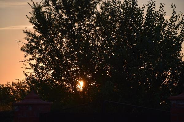 Солнце на закат - сразу холодно