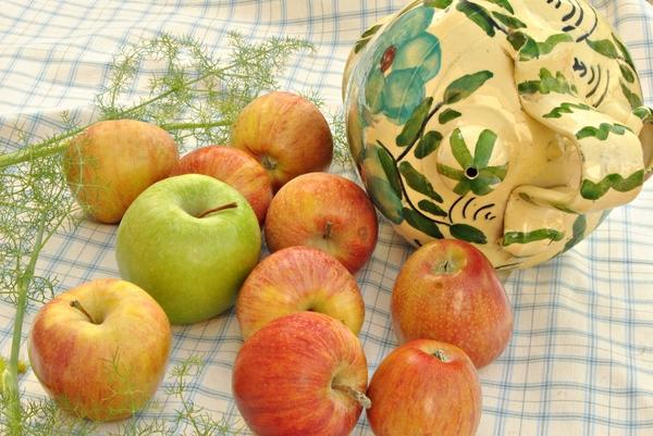 Яблоки моченые с укропом и листьями черной смородины