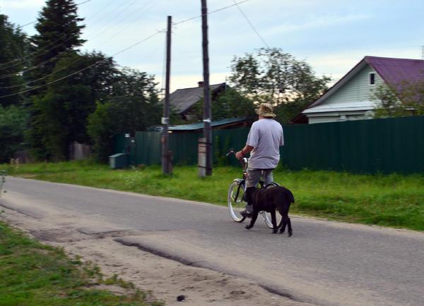 Велопрогулка не отменяет наличия намордника на собаке