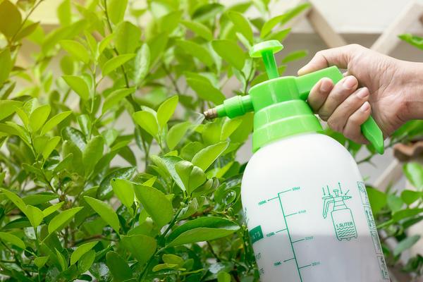 Уксус для сада и огорода