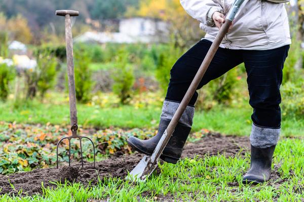 Лопата — главный инструмент для лишней работы на даче