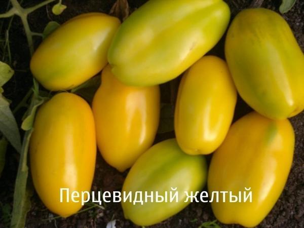 Томат сорт Перцевидный желтый фото сайта www.semenagrad.ru