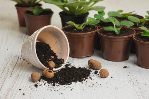 Что можно использовать в качестве дренажа: мелкие гранулы керамзита, щебень, гальку