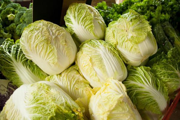 Важно правильно выбрать сорт или гибрид