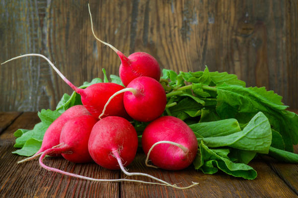 Редис - хороший корнеплод