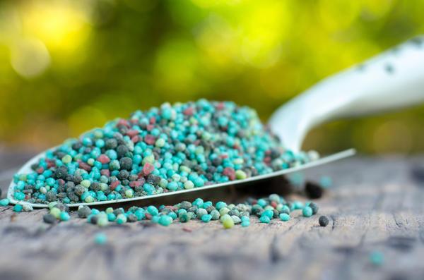 Комплексные минеральные удобрения используются для всех видов растений