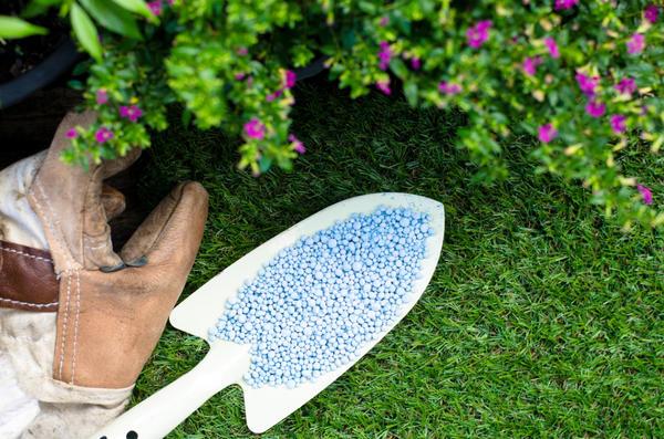 Минеральные удобрения важны для растений
