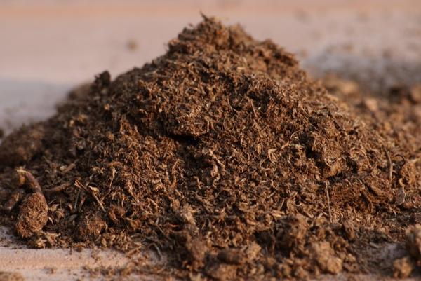 Торф увеличивает содержание гумуса и значительно улучшает физиологические свойства почвы