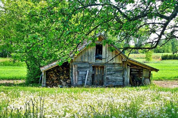 Старый садовый сарай