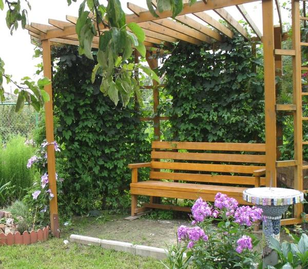Садовая скамейка с перголой. Фото с сайта 5sad.ru