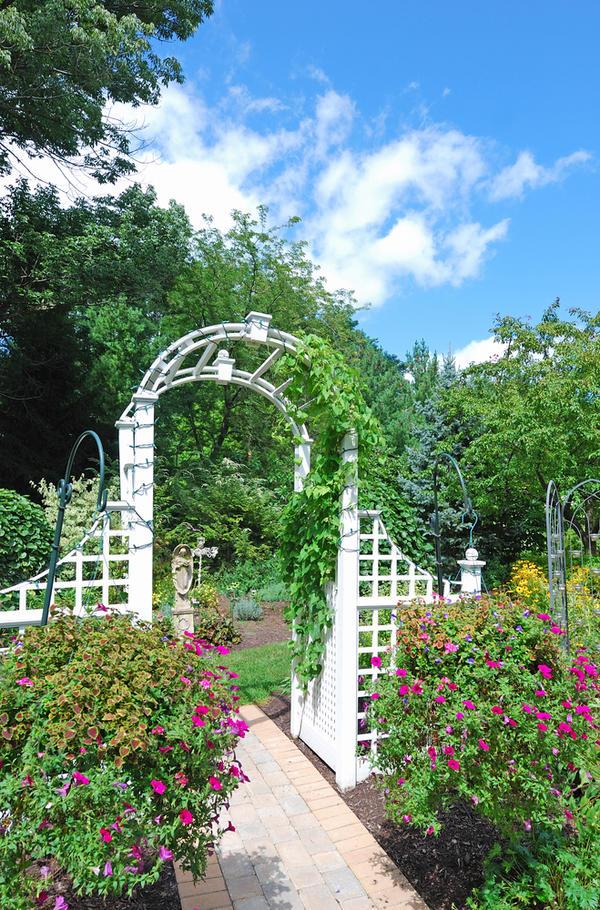 Арка может отделить цветочную часть от огородной